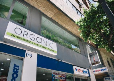 organic13
